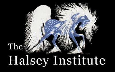 Music Business Internacional – Método JIM HALSEY / EUA